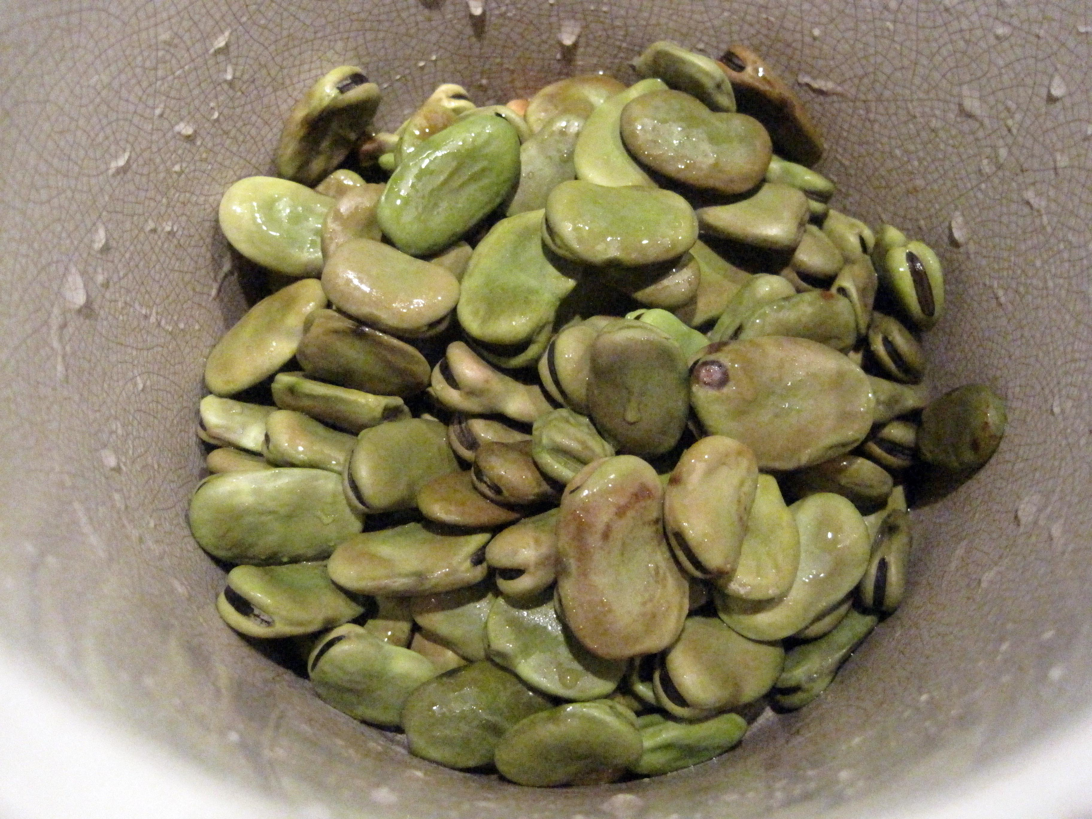 fava fresh marinated fava beans more about fava beans green fava beans ...